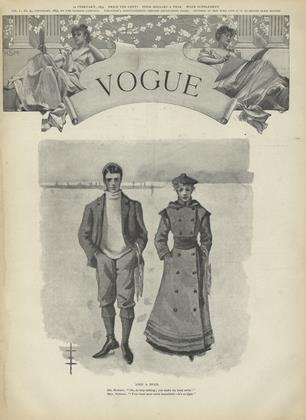 Cover for the February 11 1893 issue