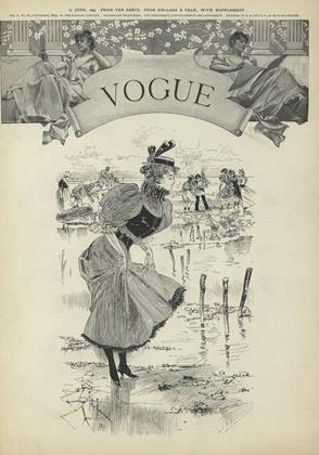 Cover for the June 17 1893 issue