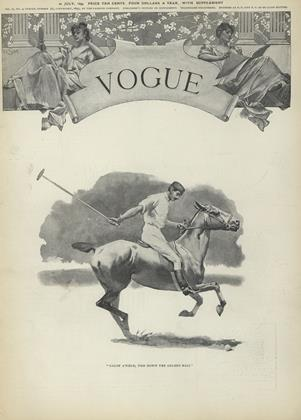 Cover for the July 22 1893 issue