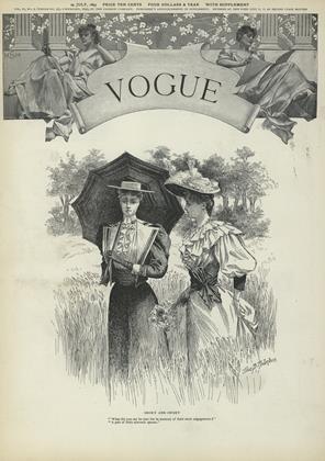 Cover for the July 29 1893 issue