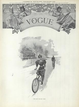 Cover for the November 22 1894 issue