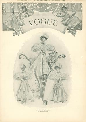 Cover for the November 14 1895 issue