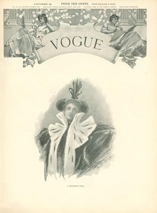 Cover for the November 28 1895 issue