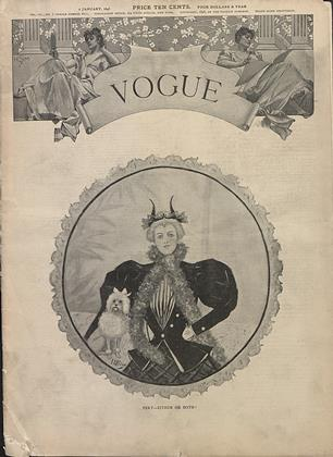 Cover for the January 2 1896 issue