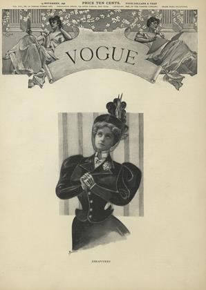 Cover for the November 19 1896 issue