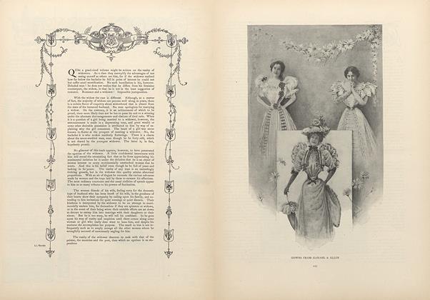 Social Essay: Vanity of the Widower