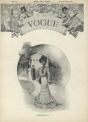 Cover for the June 15 1899 issue