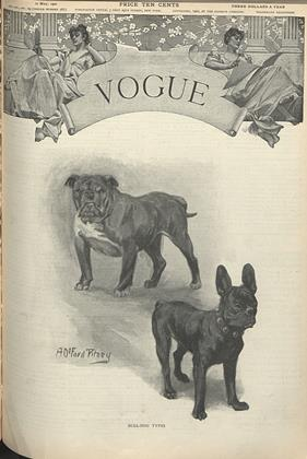 Cover for the May 10 1900 issue