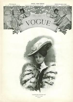 Cover for the November 28 1901 issue