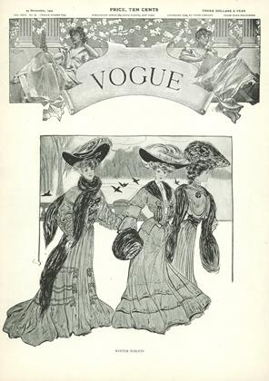 Cover for the November 24 1904 issue