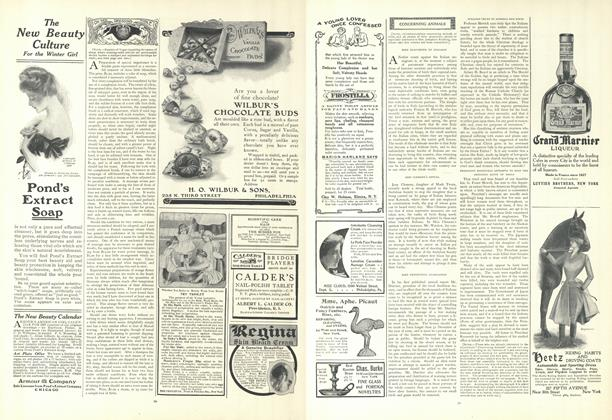 Article Preview: Concerning Animals, January 17 1907 | Vogue