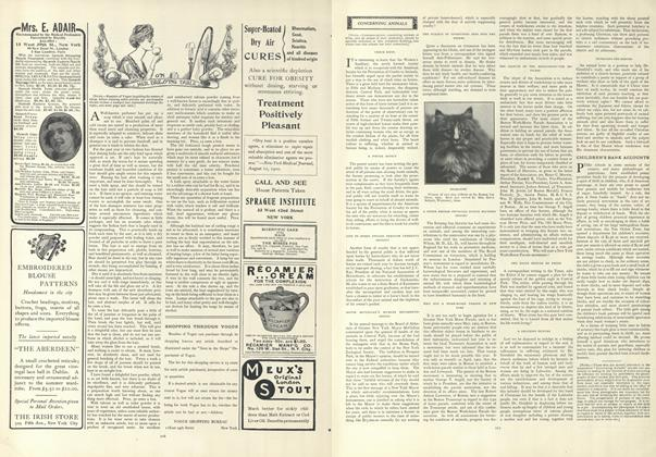 Article Preview: Concerning Animals, January 24 1907 | Vogue