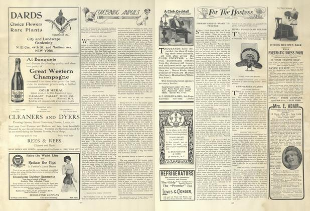 Article Preview: Concerning Animals, June 6 1907 | Vogue