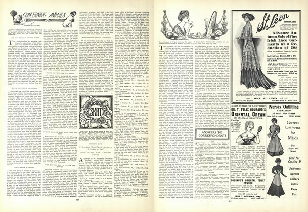 Article Preview: Concerning Animals, August 27 1908 | Vogue