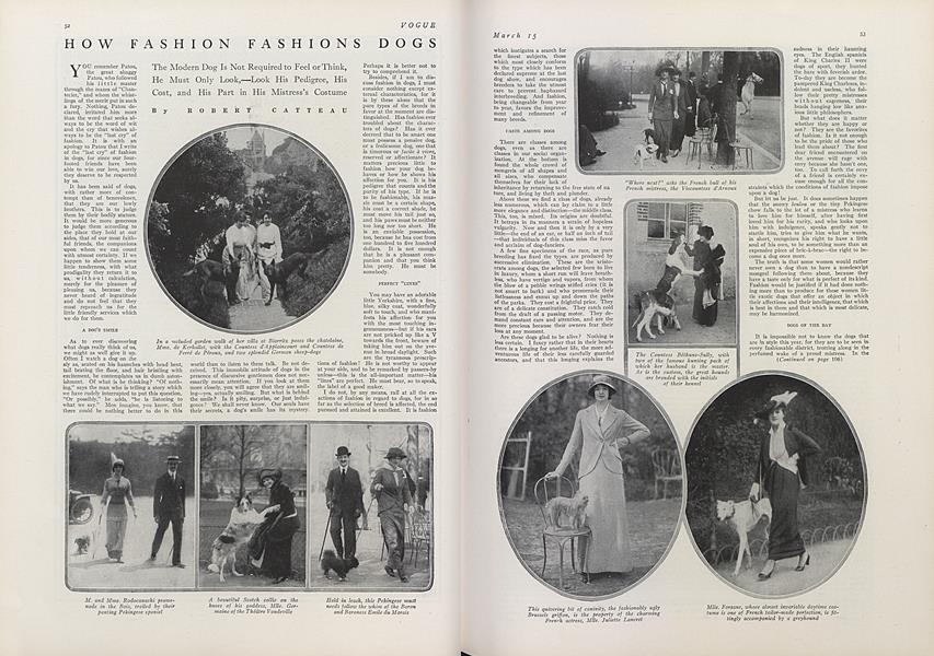 How Fashion Fashions Dogs