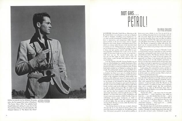 Not Gas...Petrol!