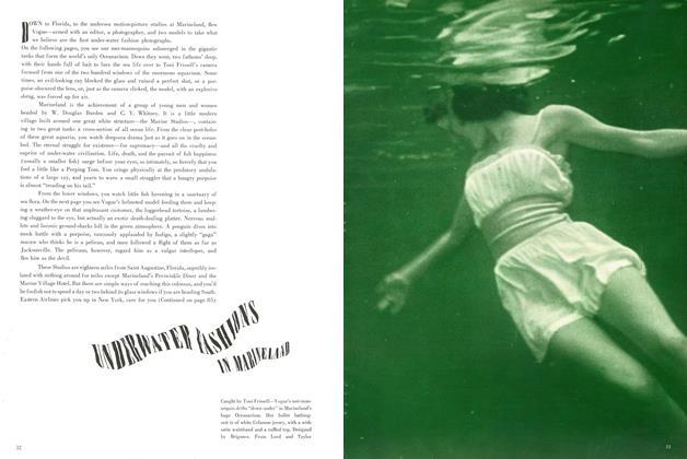 Underwater Fashions in Marineland