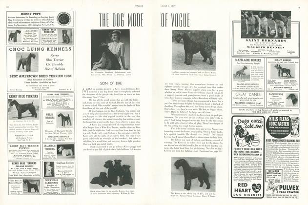 The Dog Mode of Vogue: Son O' Eire