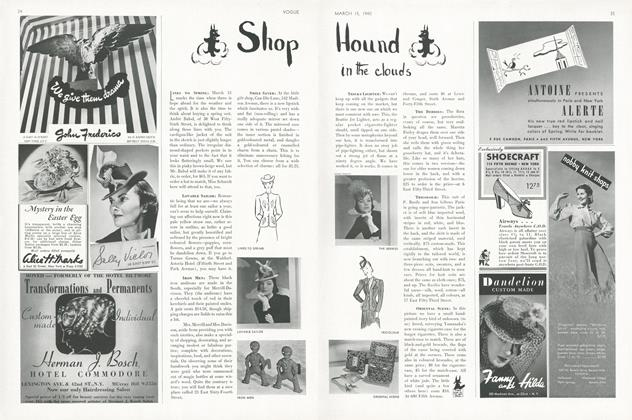 Shop Hound in the Clouds