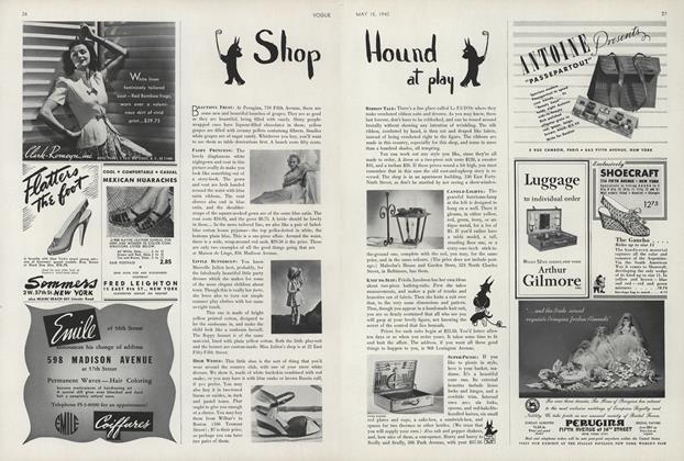 Shop Hound at Play