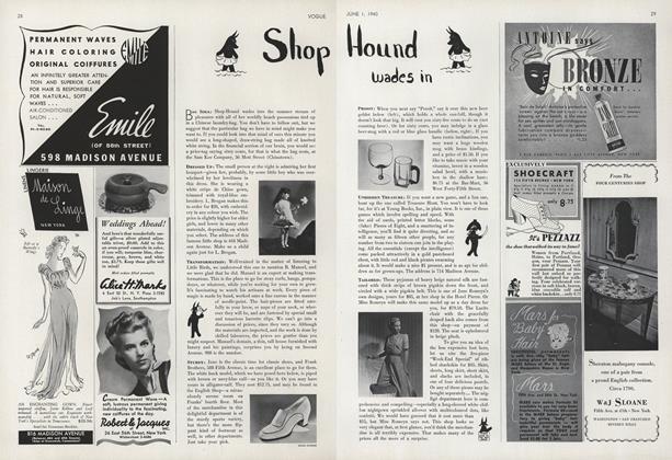 Shop Hound Wades In