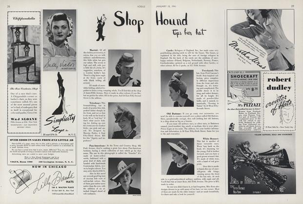 Shop Hound Tips Her Hat