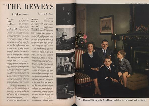 The Deweys: A Report from the Photographer Who Took These Pictures