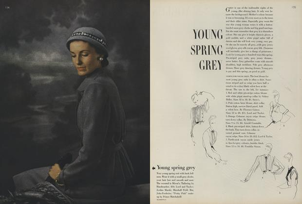 Young Spring Grey