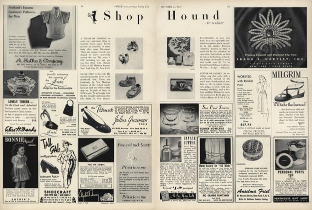 Shop Hound...To Market