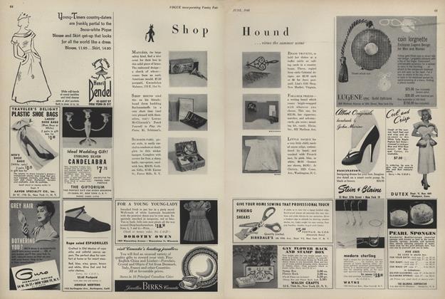 Shop Hound...Views the Summer Scene