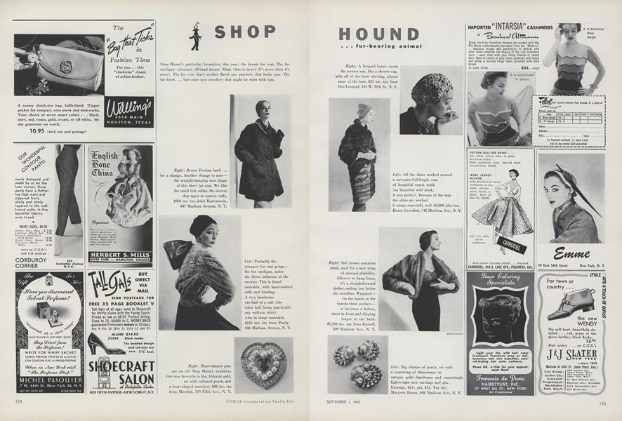 Shop Hound...Fur-bearing Animal/...Around the House