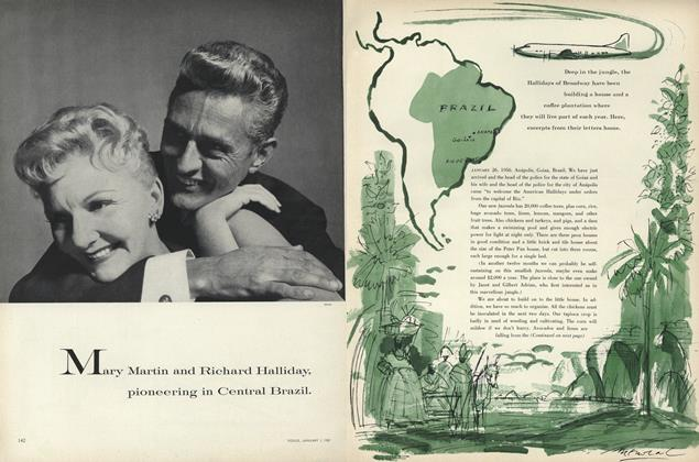 Mary Martin and Richard Halliday, Pioneering in Central Brazil