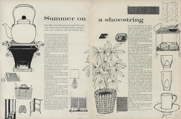 Summer on a Shoestring