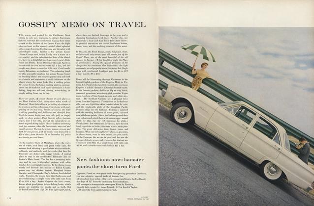 Gossipy Memo on Travel