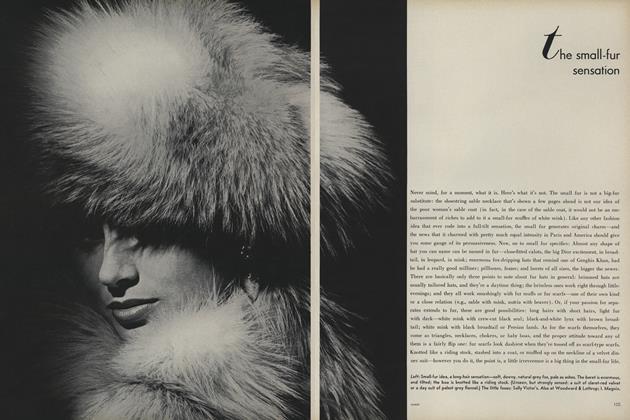 The Small-Fur Sensation