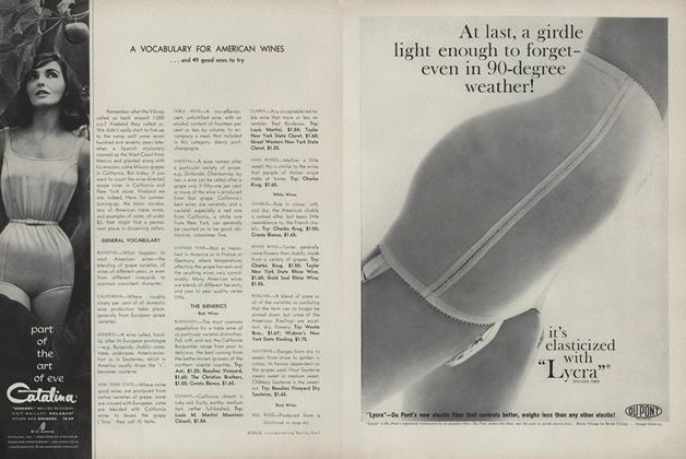 Article Preview: A Vocabulary for American Wines... and 49 Good Ones to Try, June 1962   Vogue
