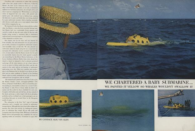 We Chartered a Baby Submarine...We Painted It Yellow So Whales Wouldn't Swallow It