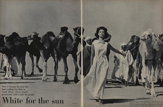 White for The Sun: Trek to Tunisia