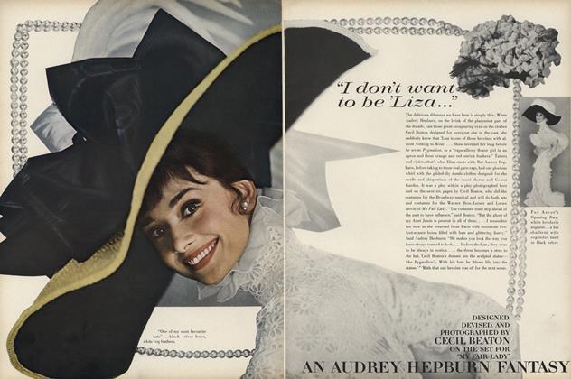 An Audrey Hepburn Fantasy