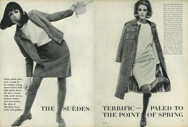 The Suedes Terrific- Paled to the Point of Spring