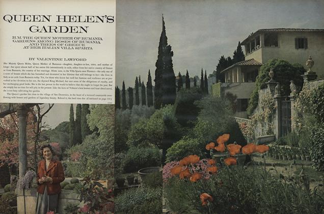 Queen Helen's Garden