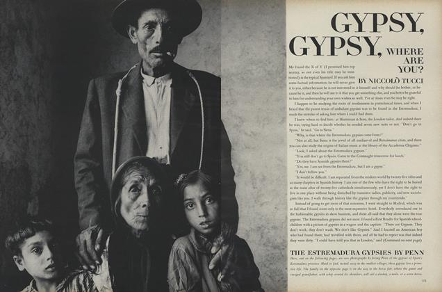 Article Preview: Gypsy, Gypsy, Where are You?, August 15 1966 | Vogue