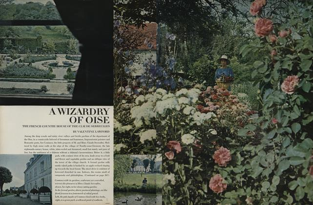 A Wizardry of Oise