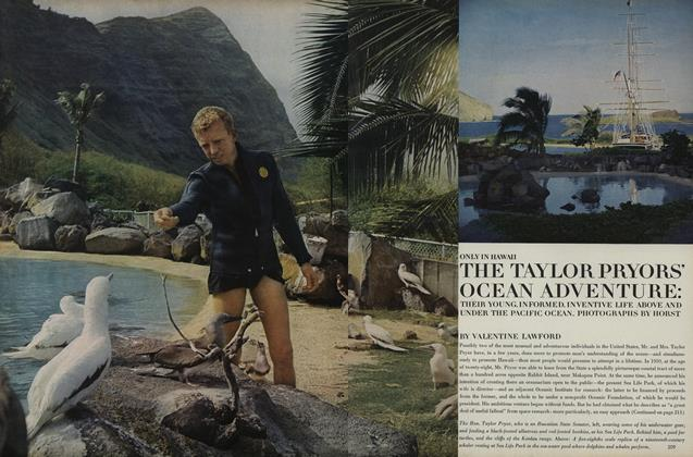Only in Hawaii: The Taylor Pryor's Ocean Adventure