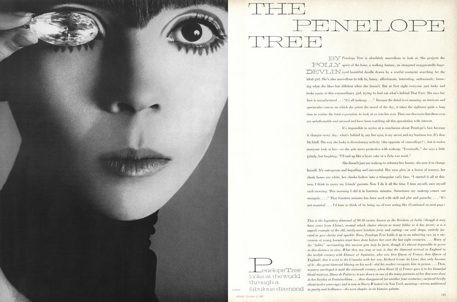 The Penelope Tree