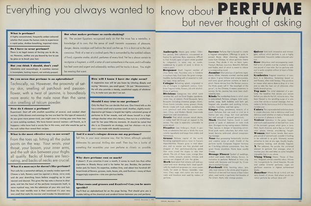 Everything You Wanted to Know About Perfume But Never Thought of Asking
