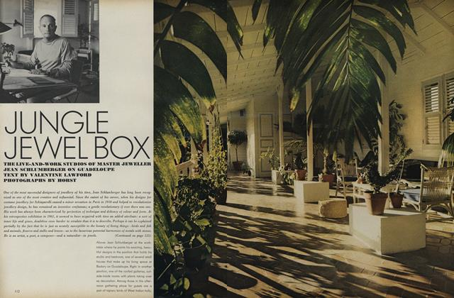 Jungle Jewel Box