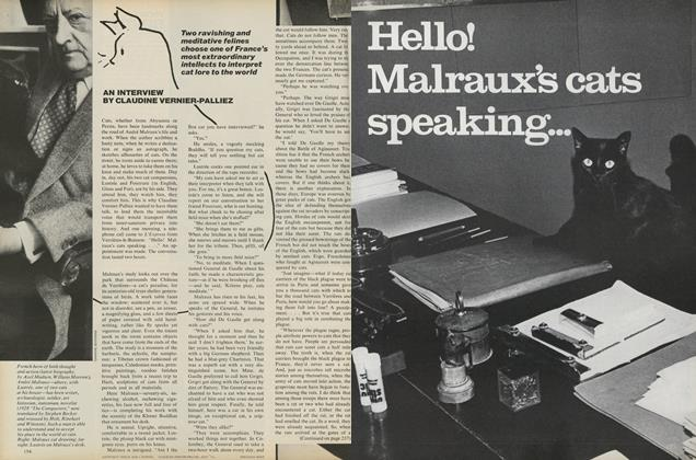 Article Preview: Hello! Malraux's cats speaking..., December 1976 | Vogue
