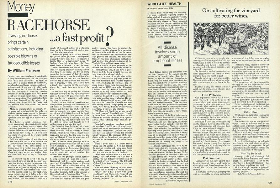 Racehorse...a Fast Profit?