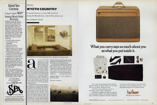 Article Preview: Wyeth Country, October 1987 | Vogue
